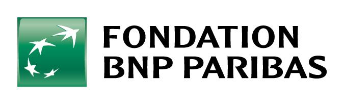 Fondation Bnp